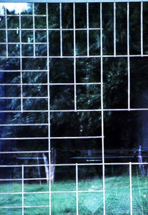 Glas-Sandwich-Holzlamellen-04