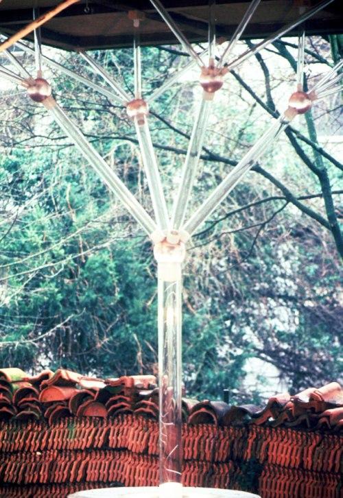 Glasbaum-02